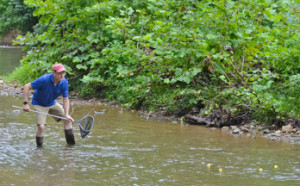 David Ward waits to make the measure of flow in the Creek
