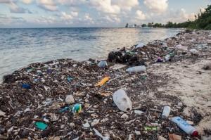 Plastic waste threatens ocean wildlife