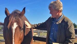 NPR_Farm_horse_jpf2