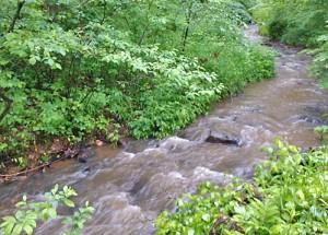 Free flowing streams of clean water